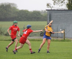 Clare Senior Camogie captain, Kate Lynch. Picture: Caroline O'Keeffe
