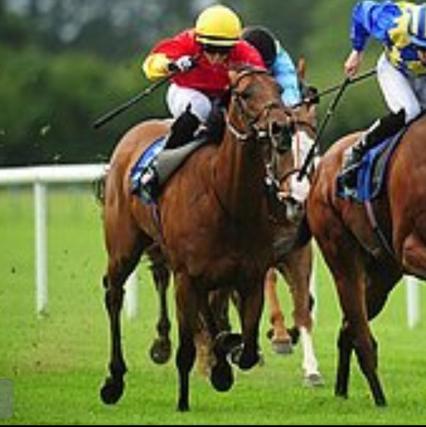 Fanore jockey, Ian Queally