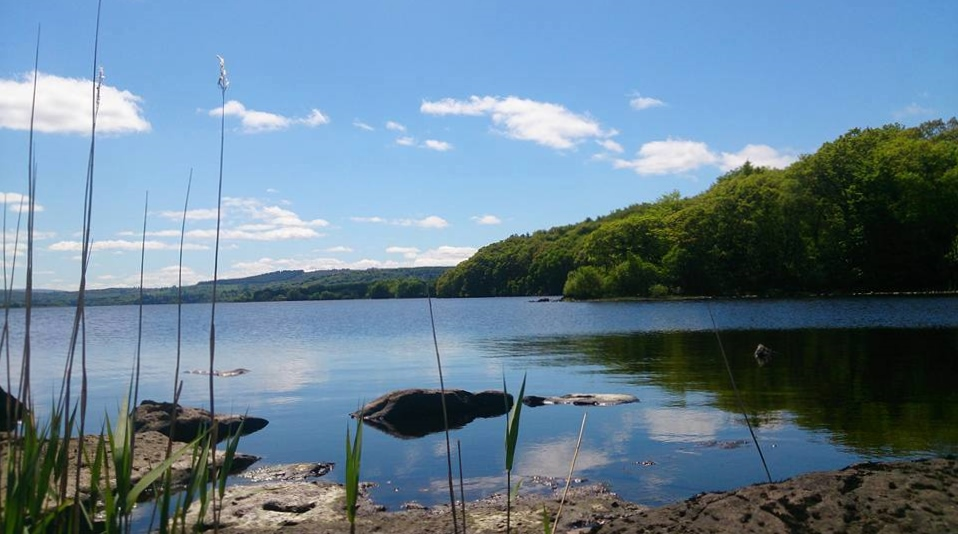 Sunshine at Lough Graney in East Clare. Pic Ann Illing