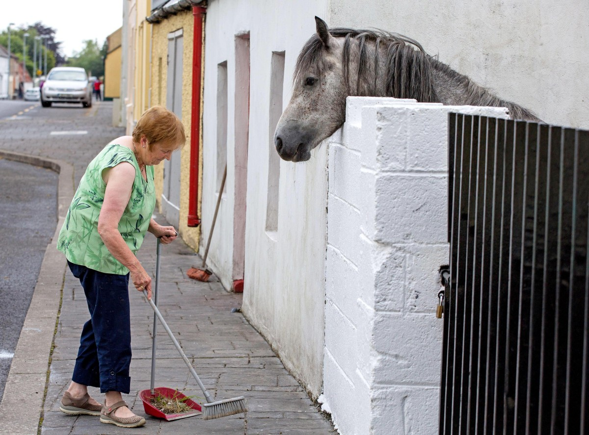 Elizabeth Brady ,Kilkishen, is closely supervised as she prepares for Tidy Towns on Main Street Kilkishen Co. Clare on Wednesday.Pic Arthur Ellis
