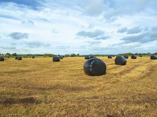 Farm-Plastics-Photo_SASilag