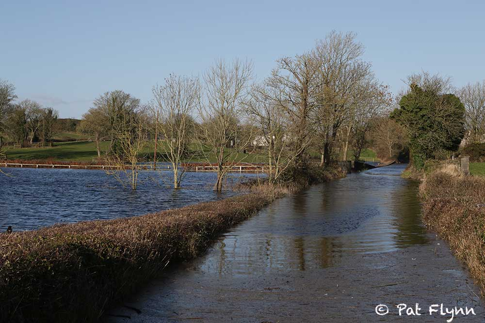 Flooding at Ballycar this week - Photo: © Pat Flynn 2016