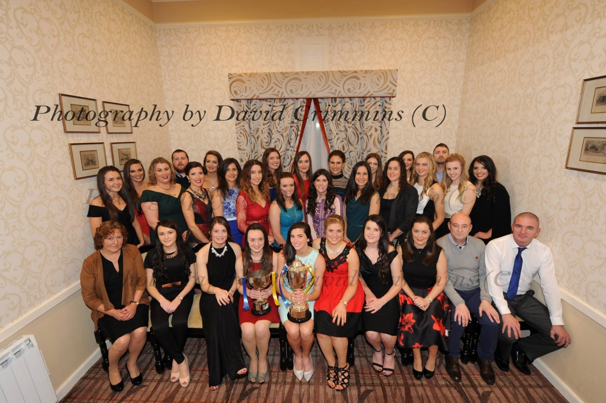 Newmarket-on-Fergus Senior Camogie League and Championship Winners 2015. Picture: David Crimmins